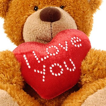 922-i_love_you_teddy_bear