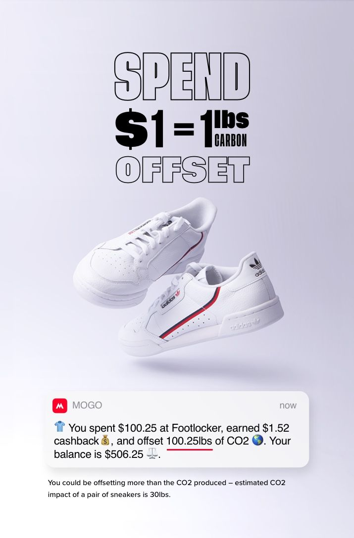 shoesexample