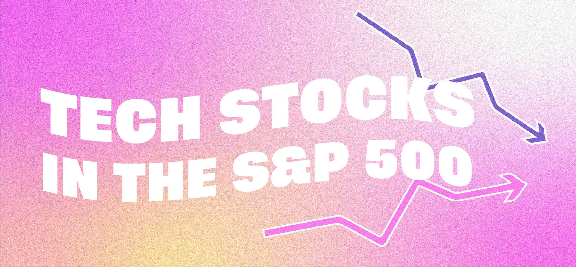 Tech Stocks in the S&P 500